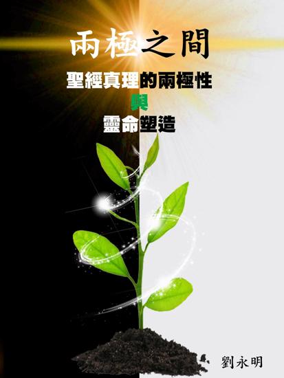 圖片 兩極之間:聖經真理的兩極性與靈命塑造(紙質版)(不設定郵寄至中國大陸的服務)