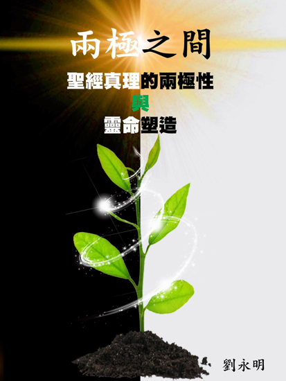 Picture of 兩極之間:聖經真理的兩極性與靈命塑造(紙質版)(不設定郵寄至中國大陸的服務)